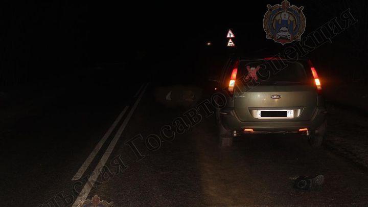 В Новомосковске на дороге погиб пешеход