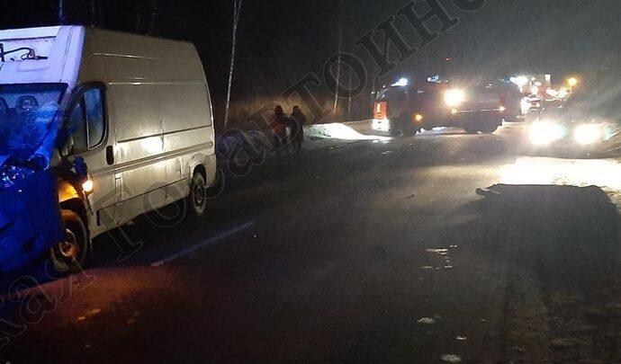 В Алексинском районе на дороге погиб пешеход