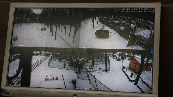 Вандалов в Новомосковске отследят по видеокамерам