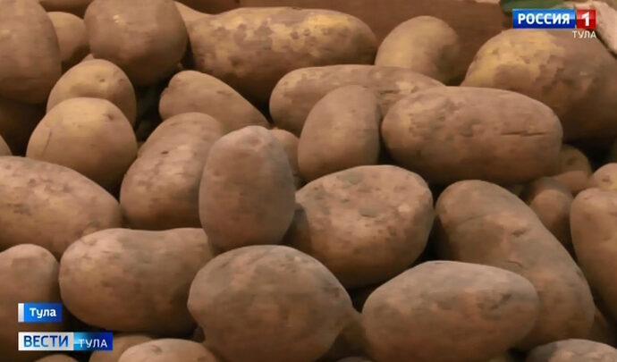 Куда пропал с прилавков тульский картофель?