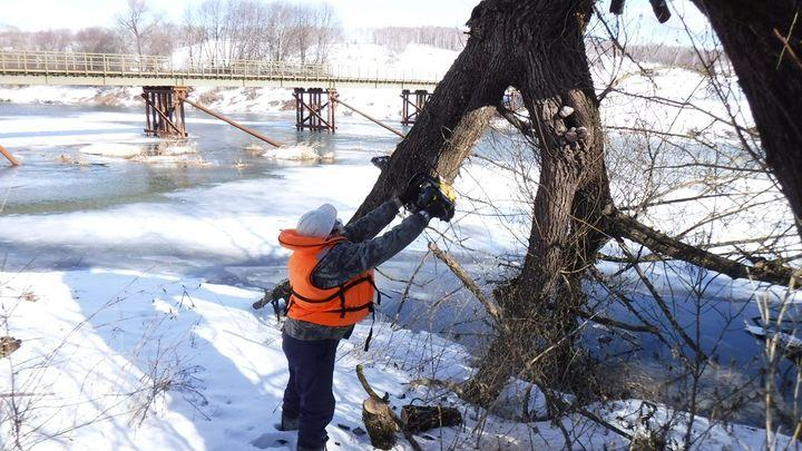 Одоевские спасатели расчищают русло Упы у мостов