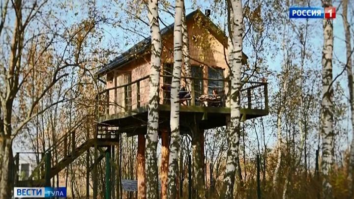 В Тульской области туристам предлагают пожить на дереве