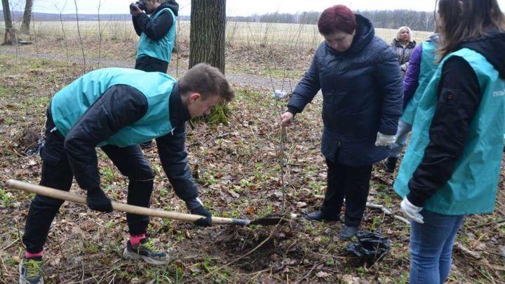 Дубы Победы теперь будут расти в Ясной Поляне