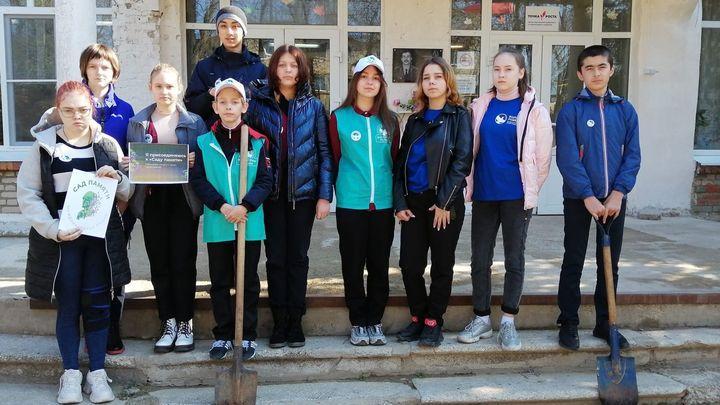 Ещё один Сад Памяти разбили волонтёры на территории Тульской области