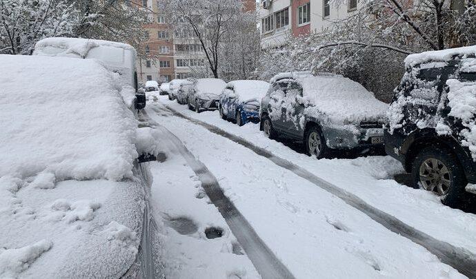 Поваленные деревья и оборванные провода: в Тулу вернулась зима