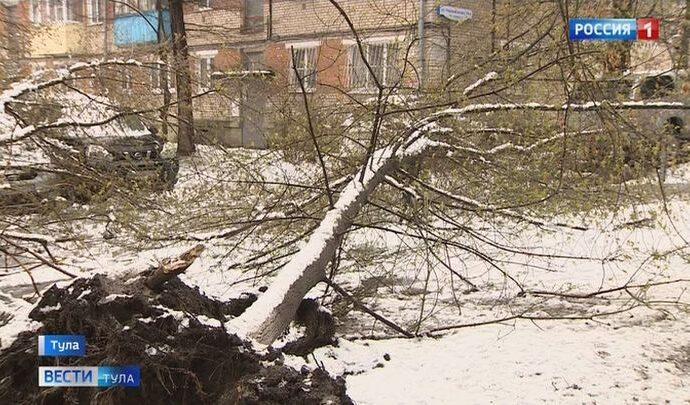 Апрельский снегопад вернул Тулу в зиму