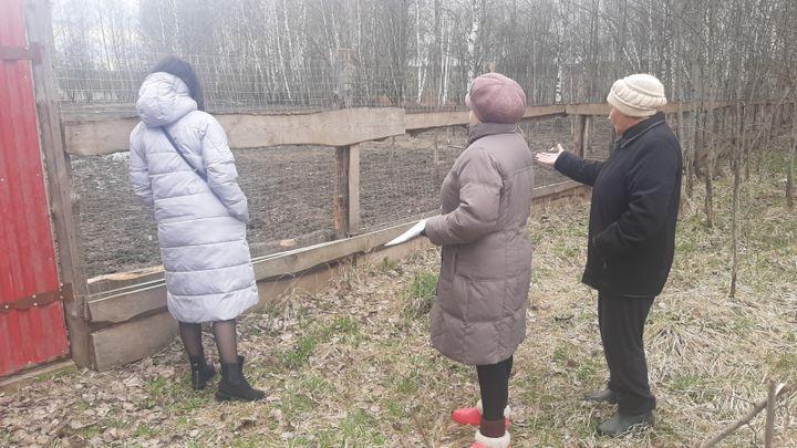 Жители Суворова пожаловались в ОНФ на свинство