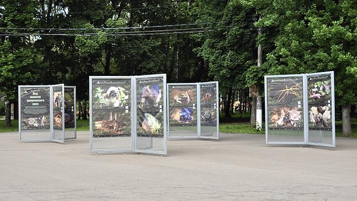 Фотовыставка в парке