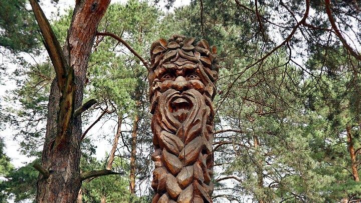 Сказка в Алексинском парке Жалка