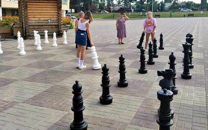 Стрит-шахматы в Ефремове