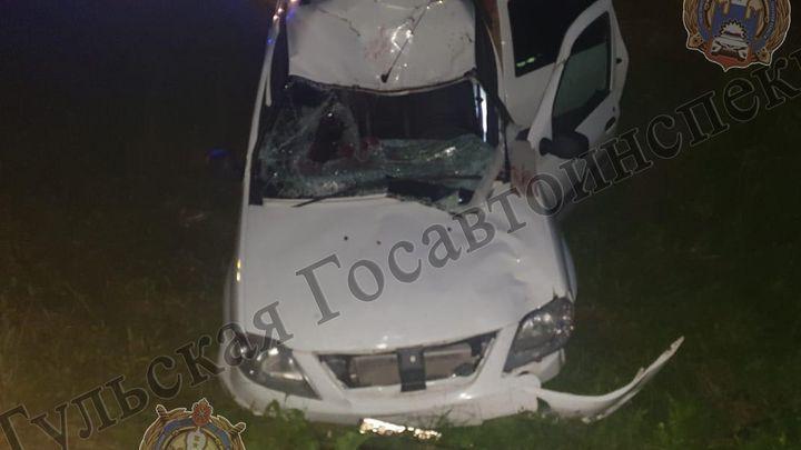 В Туле после наезда на лося водитель оказался в больнице