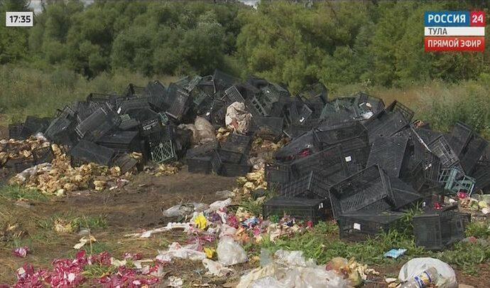 В Тульской области обнаружили еще одну зловонную свалку