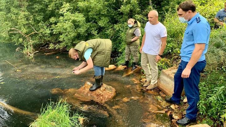 Тульская прокуратура проверит информацию о загрязнении реки Дон