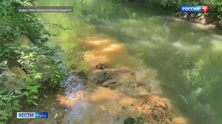 Эксперты взяли пробы в месте предполагаемого загрязнения Тулицы сточными водами