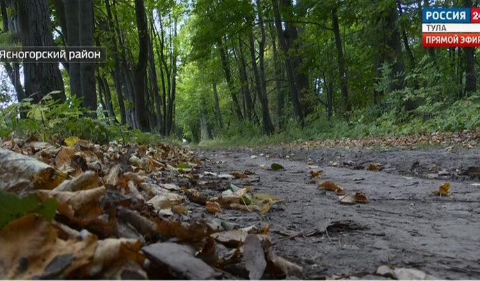 В Ясногорском районе хотят закатать в асфальт мемориальную аллею