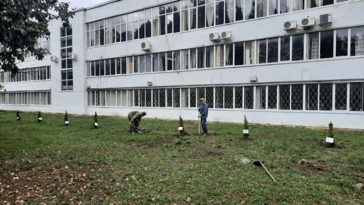 В Кимовске высадили аллею, посвящённую трудовым династиям