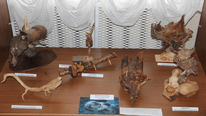 Природа и фантазия: Алексинский художественно-краеведческий музей приглашает на выставку