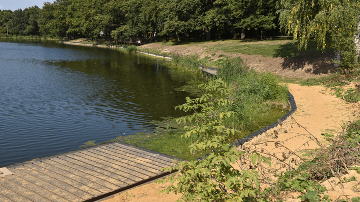 На пруду Первомайского в Щёкинском районе завершено берегоукрепеление
