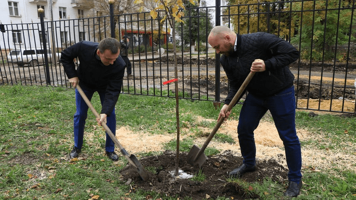 «Гринспайер» и «Зеленый шпиль»: В Новомосковске высадили аллею творчества