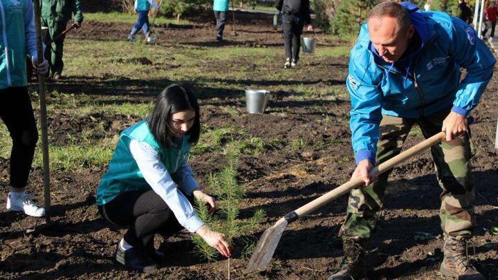 В Узловой прошла эколого-патриотическая акция «Лес Победы»