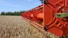 Новомосковские аграрии подводят итоги уборочной